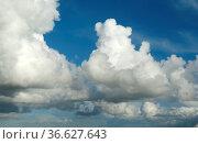 Wolken, Blau Konvektionswolken, Blauer Himmel, Стоковое фото, фотограф Zoonar.com/Manfred Ruckszio / age Fotostock / Фотобанк Лори