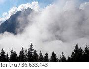 Wolken, Serles, stubai, stubaital, berg, berge, alpen, hochgebirge... Стоковое фото, фотограф Zoonar.com/Volker Rauch / easy Fotostock / Фотобанк Лори