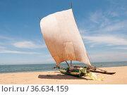 Katamaran liegt am Strand an der Kueste von Sri Lanka. Стоковое фото, фотограф Zoonar.com/Uwe Bauch / easy Fotostock / Фотобанк Лори
