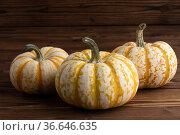 Three striped pumpkins for Halloween. Стоковое фото, фотограф Иван Михайлов / Фотобанк Лори