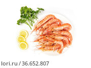 An overhead photo of plate of raw shrimps on white, with parsley and... Стоковое фото, фотограф Zoonar.com/Katerina Solovyeva / easy Fotostock / Фотобанк Лори