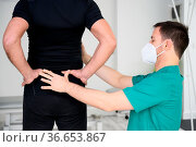 Rear view of a physiotherapist examining man back. High quality photo. Стоковое фото, фотограф Zoonar.com/DAVID HERRAEZ CALZADA / easy Fotostock / Фотобанк Лори