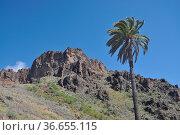 Berge , Soria, Gran Canaria, berg, kanaren, kanarische inseln, spanien... Стоковое фото, фотограф Zoonar.com/Volker Rauch / easy Fotostock / Фотобанк Лори