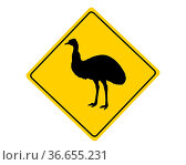 Achtung Emu. Стоковое фото, фотограф Zoonar.com/lantapix / easy Fotostock / Фотобанк Лори