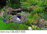 Ziergarten, Gartenteich mit Goldfischen, Gartentisch und Gartenstühle. Стоковое фото, фотограф Zoonar.com/Bildagentur Geduldig / easy Fotostock / Фотобанк Лори