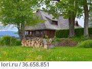 Schwarzwald, Baden-Württemberg, Hochschwarzwald, Breitnau, schönes... Стоковое фото, фотограф Zoonar.com/Bildagentur Geduldig / easy Fotostock / Фотобанк Лори
