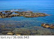 Italien, Italia, Sardinien, bei Alghero, klares Meerwasser, Felsen... Стоковое фото, фотограф Zoonar.com/Bildagentur Geduldig / easy Fotostock / Фотобанк Лори