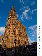 Staßburger Münster, Straßburg, Elsaß, Frankreich, | Cathedrale, Strasbourg... Стоковое фото, фотограф Zoonar.com/Günter Lenz / age Fotostock / Фотобанк Лори