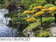 Parc Orientale de Maulevrier, Oriental Park of Maulevrier, Japanese... Стоковое фото, фотограф Frederic Soreau / age Fotostock / Фотобанк Лори