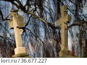 Grabkreuze an der Kilianskirche in Lügde. Стоковое фото, фотограф Zoonar.com/Martina Berg / easy Fotostock / Фотобанк Лори