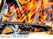 Campfire with burning wood outdoors, close up. Стоковое фото, фотограф Zoonar.com/Alexander Blinov / easy Fotostock / Фотобанк Лори