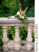 Bridal bouquet of white and orange roses, eringyum, ammi, boxwood... Стоковое фото, фотограф Zoonar.com/Nadtochiy Vladimir / easy Fotostock / Фотобанк Лори
