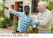 Disgruntled men talking in backyard. Стоковое фото, фотограф Яков Филимонов / Фотобанк Лори