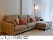 Sofa, cushions and lamp, Living room, Home interior, Interior decoration... Стоковое фото, фотограф Javier Larrea / age Fotostock / Фотобанк Лори