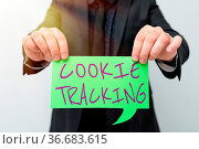 Inspiration showing sign Cookie Tracking, Business overview Data stored... Стоковое фото, фотограф Zoonar.com/General / easy Fotostock / Фотобанк Лори
