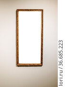 Narrow tall picture frame with cutout canvas on gray brown wall. Стоковое фото, фотограф Zoonar.com/Valery Voennyy / easy Fotostock / Фотобанк Лори
