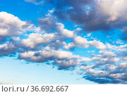 Front of gray and white low clouds in blue autumn afternoon sky. Стоковое фото, фотограф Zoonar.com/Valery Voennyy / easy Fotostock / Фотобанк Лори