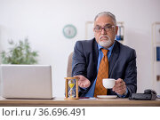 Old boss working in the office. Стоковое фото, фотограф Elnur / Фотобанк Лори