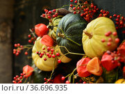 Composition of small pumpkins and zucchini on a vintage door. Стоковое фото, фотограф Ирина Аринина / Фотобанк Лори