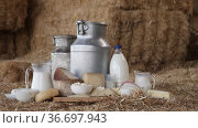Milk in different containers, various cheese, butter and other dairy products on hay at livestock breeding farm. Стоковое видео, видеограф Яков Филимонов / Фотобанк Лори