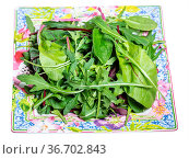 Mix of assorted small young salad greens on ornamental square plate... Стоковое фото, фотограф Zoonar.com/Valery Voennyy / easy Fotostock / Фотобанк Лори