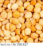 Square food background - raw dried split yellow peas close up. Стоковое фото, фотограф Zoonar.com/Valery Voennyy / easy Fotostock / Фотобанк Лори