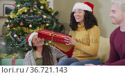 Happy diverse group of friends sharing with presents at christmas time. Стоковое видео, агентство Wavebreak Media / Фотобанк Лори