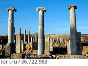 Columns on ruins of Perge in Turkey. Стоковое фото, фотограф Zoonar.com/Valeriy Shanin / age Fotostock / Фотобанк Лори