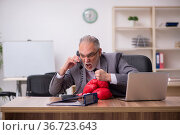Old businessman employee wearing boxing gloves at workplace. Стоковое фото, фотограф Elnur / Фотобанк Лори