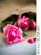 pink beautiful summer roses on wooden table. Стоковое фото, фотограф Peredniankina / Фотобанк Лори