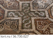 Mosaic floor. Roman mosaic in the oldest city in Europe. Depiction... Стоковое фото, фотограф Zoonar.com/Georgi Dimitrov / easy Fotostock / Фотобанк Лори