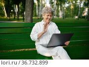 Drandma using laptop on the bench in summer park. Стоковое фото, фотограф Tryapitsyn Sergiy / Фотобанк Лори