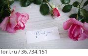 Pink beautiful summer roses on wooden table. Стоковое видео, видеограф Peredniankina / Фотобанк Лори