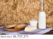 Milk bottle, slices of fresh wheat bread and brie on hay. Стоковое фото, фотограф Татьяна Яцевич / Фотобанк Лори