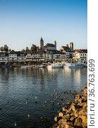 Hafenpromenade, Rapperswil, Kanton St. GallenSchweiz/Rapperswil, ... Стоковое фото, фотограф Zoonar.com/Günter Lenz / age Fotostock / Фотобанк Лори