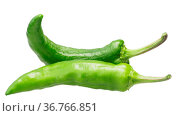 Crooked Green Chile Peppers (C. annuum). Clipping paths. Стоковое фото, фотограф Zoonar.com/Max Tat / easy Fotostock / Фотобанк Лори