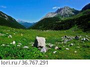 Lechquellengebirge beim Formarinjoch, Blick zum Warther Horn, Vorarlberg... Стоковое фото, фотограф Zoonar.com/Jürgen Vogt / easy Fotostock / Фотобанк Лори