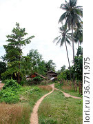 Footpath to the village on the Don Khone island, Laos. Стоковое фото, фотограф Zoonar.com/Valeriy Shanin / age Fotostock / Фотобанк Лори