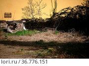 Ein rustikaler und nostalgischer Hinterhof mit Ziegelsteinstapeln... Стоковое фото, фотограф Zoonar.com/Bastian Kienitz / easy Fotostock / Фотобанк Лори