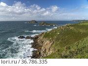 Küste am Pointe de Meinga in Saint-Coulomb, Bretagne, Frankreich | ... Стоковое фото, фотограф Peter Schickert / age Fotostock / Фотобанк Лори