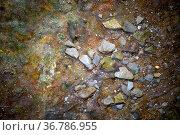 Schiefersteine, scharfkantige Steine und Mineral unter klarem Wasser. Стоковое фото, фотограф Zoonar.com/Bastian Kienitz / easy Fotostock / Фотобанк Лори