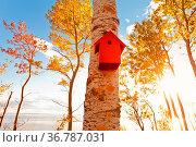 Rotes Vogelhaus in der schönen Herbstsonne. Стоковое фото, фотограф Zoonar.com/Ulrich Schade / easy Fotostock / Фотобанк Лори