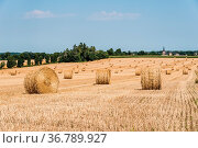 Field with hay bales after harvest in summer against blue sky. Стоковое фото, фотограф Zoonar.com/@jjfarquitectos / age Fotostock / Фотобанк Лори