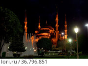 Blue mosque at night in Istanbul, Turkey. Стоковое фото, фотограф Zoonar.com/Valeriy Shanin / age Fotostock / Фотобанк Лори