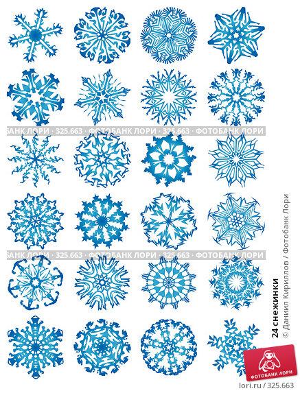 Купить «24 снежинки», иллюстрация № 325663 (c) Даниил Кириллов / Фотобанк Лори
