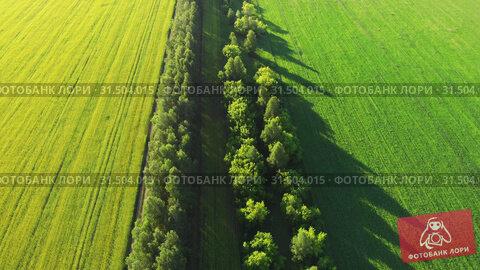 Купить «4K aerial of flying over a beautiful green meadow», видеоролик № 31504015, снято 11 июля 2019 г. (c) Jan Jack Russo Media / Фотобанк Лори