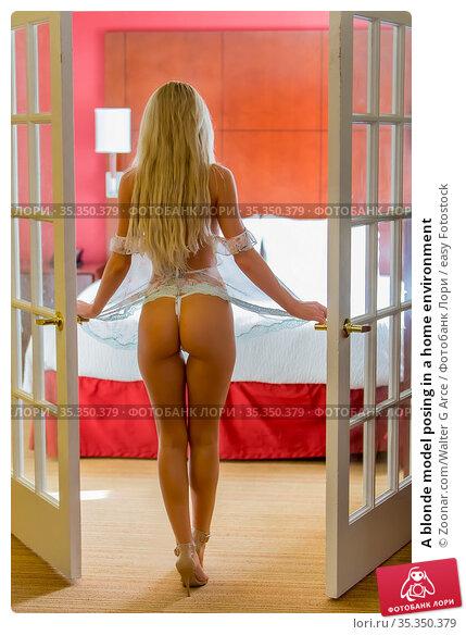A blonde model posing in a home environment. Стоковое фото, фотограф Zoonar.com/Walter G Arce / easy Fotostock / Фотобанк Лори