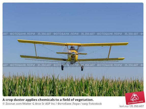 A crop duster applies chemicals to a field of vegetation. Стоковое фото, фотограф Zoonar.com/Walter G Arce Sr ASP Inc / easy Fotostock / Фотобанк Лори