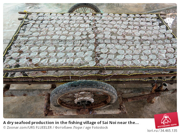 A dry seafood production in the fishing village of Sai Noi near the... Стоковое фото, фотограф Zoonar.com/URS FLUEELER / age Fotostock / Фотобанк Лори