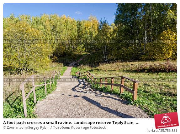 A foot path crosses a small ravine. Landscape reserve Teply Stan, ... Стоковое фото, фотограф Zoonar.com/Sergey Rybin / age Fotostock / Фотобанк Лори
